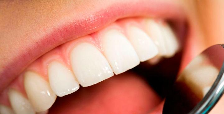 periodontia