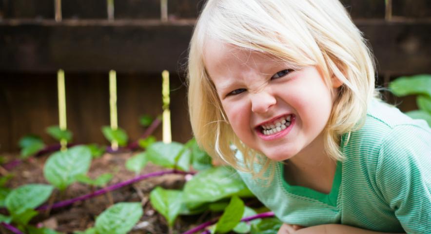 Como identificar Bruxismo Infantil?